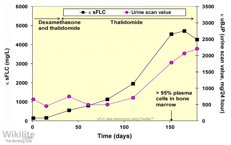 Figure 24.4. Serum and urine FLCs in a patient with LCMM.