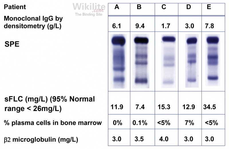 Figure 18.7. Accuracy of different blood tests for assessing bone marrow plasma cell volume in MM.