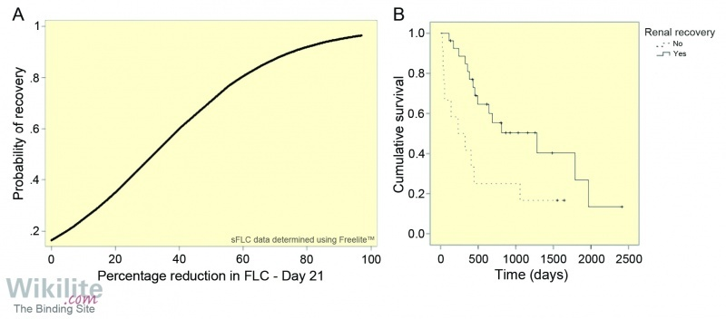Figure 27.15. (A) Probability plot of renal recovery in relation to sFLC reductions at day 21. (B) Kaplan Meier survival curves for patients with cast nephropathy.
