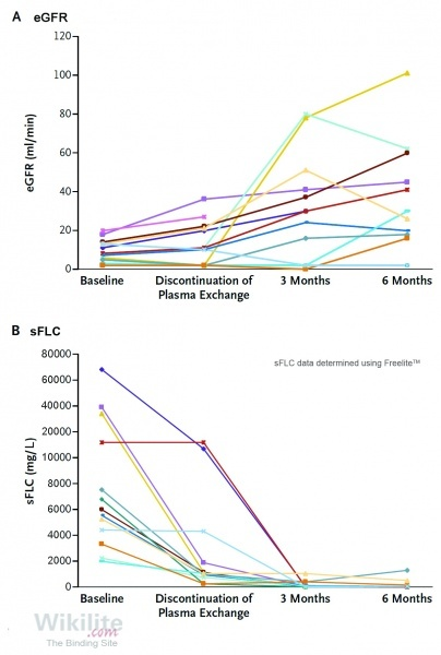 Figure 27.4. Changes in (A) eGFR and (B) sFLCs in 14 patients with MM receiving bortezomib plus plasma exchange.