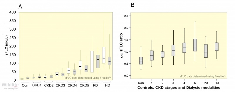 Figure 6.3. (A) κ (white) and λ (grey) sFLC concentrations and (B) κ/λ sFLC ratio in CKD stages 1 – 5 plus patients on peritoneal dialysis (PD), haemodialysis (HD) and controls (Con).