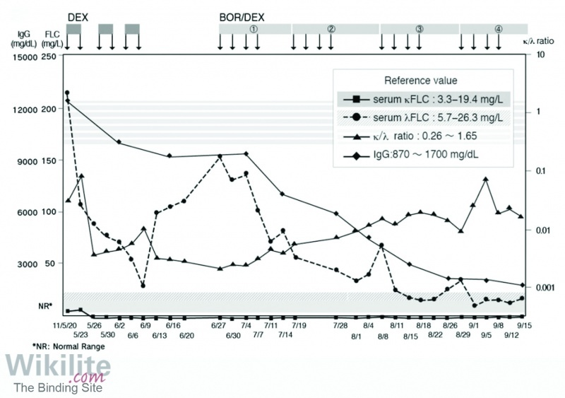Figure 18.10. λ sFLC levels decrease more rapidly than IgG levels in a patient with IgGλ IIMM treated with dexamethasone (Dex).